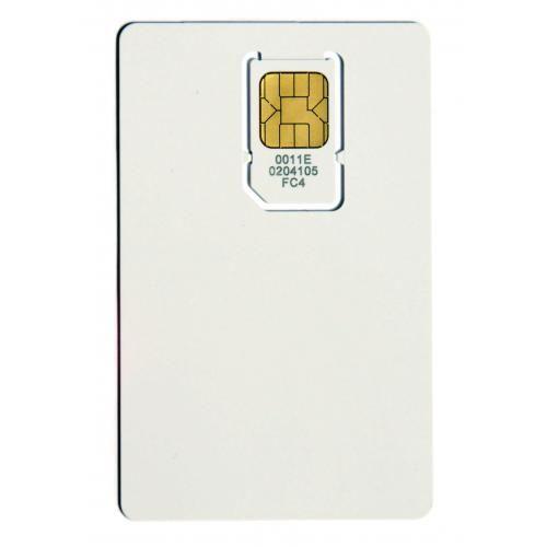 Avaya IH4 MEM-Card